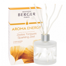 아로마 센티드 부케(디퓨저) - Energy(에너지)